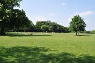 Regent Park - Englischer Rasen