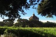 Bagan (47)
