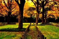 Friedhof III