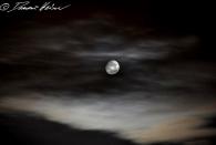 Wolkenspiel mit Mond