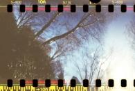 Schatten im Park