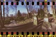 Wohlerspark