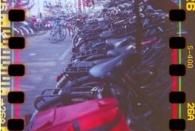 Fahrraddschungel II
