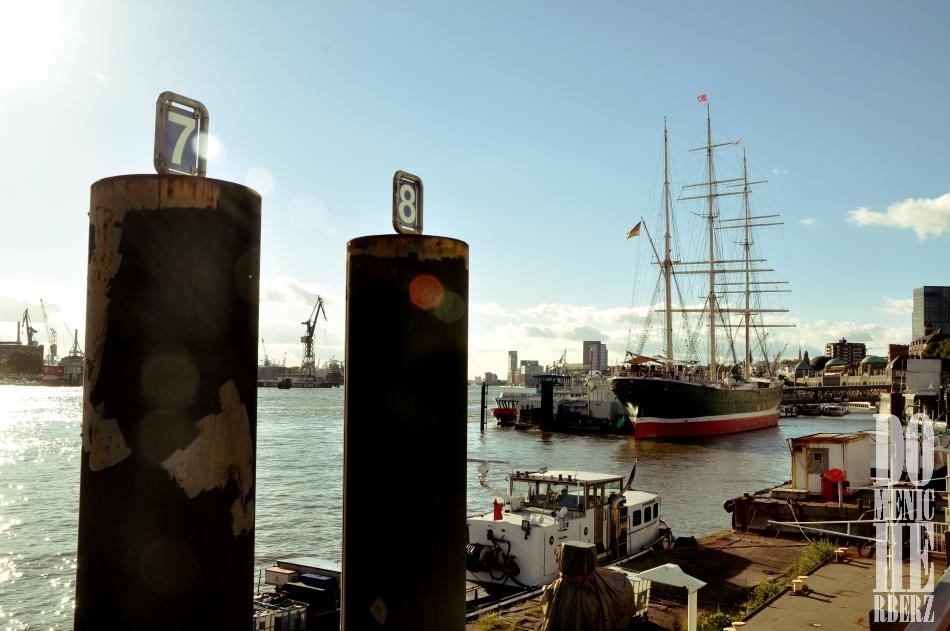 Unkraut in der Sonnenreflexion am Hafen